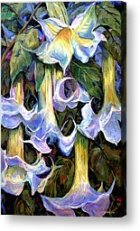 Artist not Known-Angel Trumpet